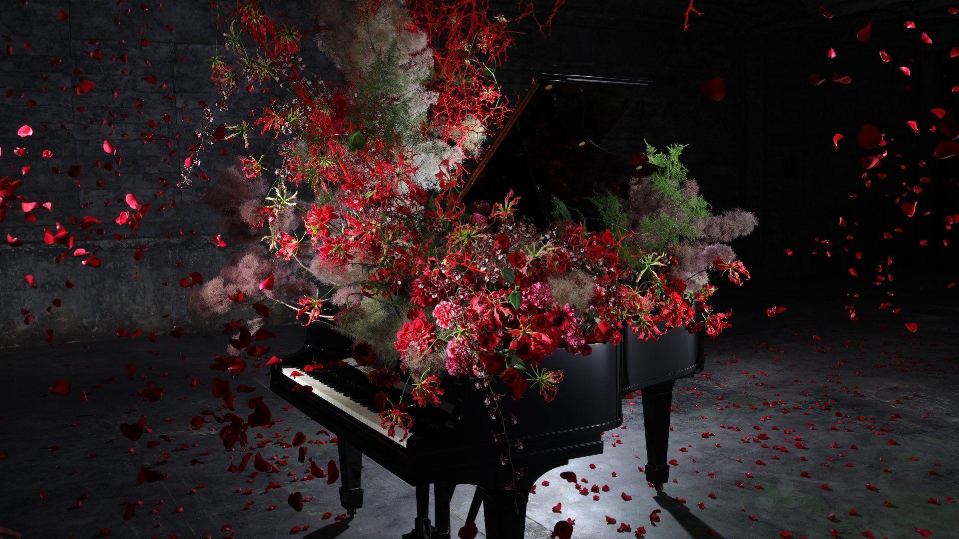 Flowers crashing ontop of piano low light no problem RF 35mm f/1.8 IS Macro STM